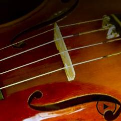 Audio_0003_Violin